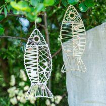 Dekorativ fisk med skal dekoration, maritim dekoration, fisk att hänga vit 38cm