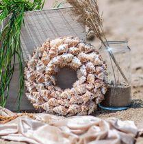 Dekorativa kranssniglar Maritima dekorativa dörrkrans havssniglar Ø25cm