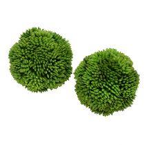 Allium ball 5cm grön 4st