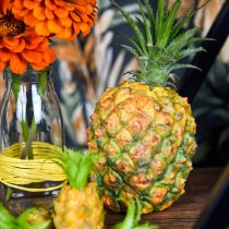 Ananas mini artificiell 20cm