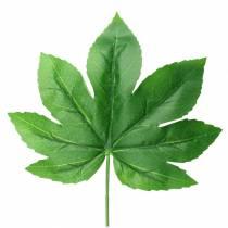 Aralia blad med stamgrön L61,5cm 12st