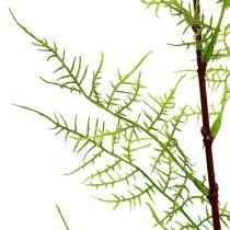 Sparrisgren 75 cm grön 3st