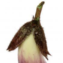 Aubergine 18,5 cm violett