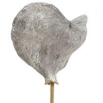 Badam på en pinne vitkalkad 12cm L55cm 23st