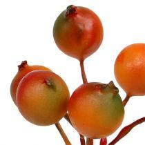 Berry pick orange 12 buntar
