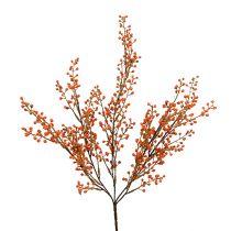 Bärgren orange L48cm 1p