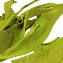 Dekorativa blad äppelgrön 120 cm 20st