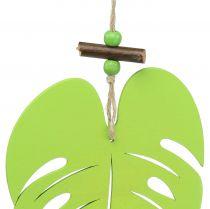 Blad för hängande ljusgrön 14,5 cm