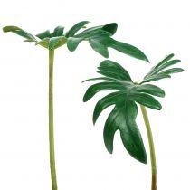 Leaf philodendron 31cm grön 12st