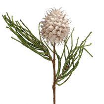 Blomgren skum grå / grön 65cm