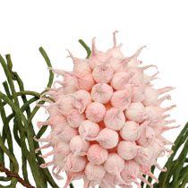 Blomma gren skum rosa / grön 65cm