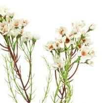 Blommagren grön, vit 80 cm 3st