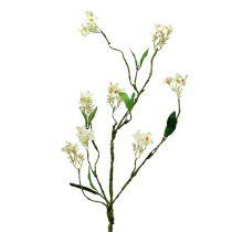 Blommande gren vit L 65cm 1p