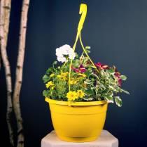 Blomkorg 25cm lila