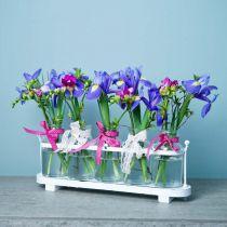 Blomma vas apotekare flaskor apotekare glas dekoration på bricka 38cm