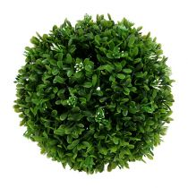 Boxwood kula Ø20cm grön