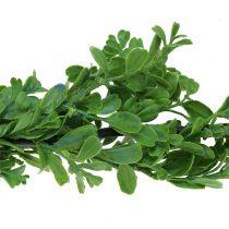 Boxwood kransgrön 180cm