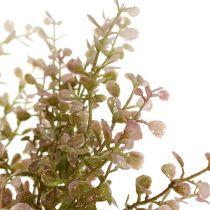 Boxwood gren rosa, rosa med glimmer 32 cm