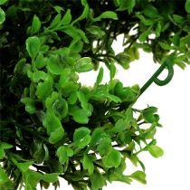 Boxwood kransgrön L170cm