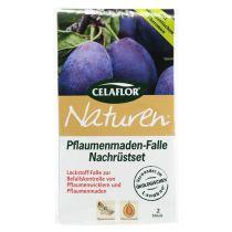Celaflor plum maggot trap eftermontering set 2st