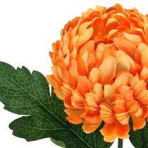 Chrysanthemum Orange Ø7cm L18cm 1p