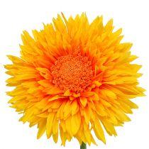 Chrysanthemum Nalle 63 cm guldgul