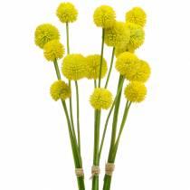 Trumstick Craspedia Yellow Artificial Garden Flower Silk Flowers 15st