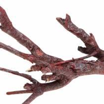 Dekoast currybusk röd tvättad 500g