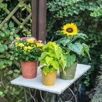 Dekorativa hink frukt gula, orange, grön tvättade Ø12,5 cm H12cm uppsättning av 3