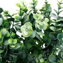 Dekorativ eukalyptusgren mörkgrön Konstgjord eukalyptus Konstgjorda gröna växter
