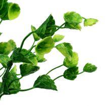 Dekorativ mintgren grön L74cm 6st