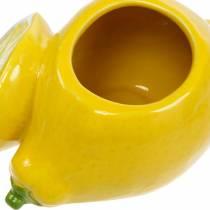 Dekorativ keramisk sommargarnering för kruka citronvas