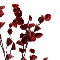 Dekorativ gren mörkröd 74cm 6st