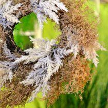 Dekorativ krans pampas gräs konstgjord kräm, brun dörrkrans Ø60cm