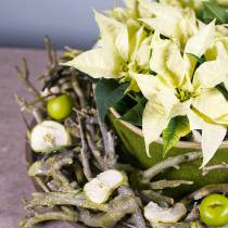 Dekoast currybusgrön tvättas 500 g