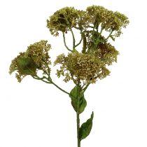Dekorativ gren stonecrop grön 58cm