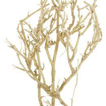 Torrt träd 500 g blekt