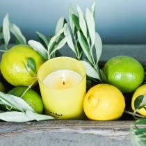 Doftljus i ett glas citron och basilika Ø7cm