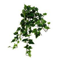 Ivy hängare vitgrön 70cm