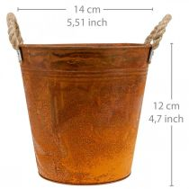 Växtkruka, höstdekoration, metallkärl med patina Ø14cm H12cm