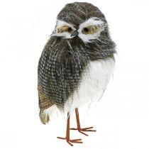 Skogsugla, vinterdekoration, dekorativ uggla, höst H41cm