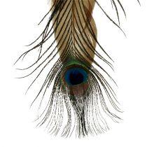 Fjäderhängare påfågelfjäder 34cm 3st