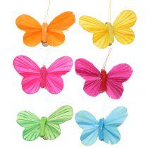 Fjärilsfjäril på klämma färgad 6cm 12st