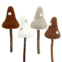 Svamp paddaprodukter brun blandade 30 cm 4st