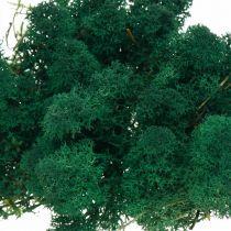 Deko-Mos grön renmos bevarar mossa för hantverk 400g