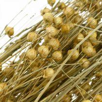 Lingräs för torra blommor 100g