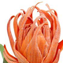 Skumblomma orange 12cm L30cm 1p