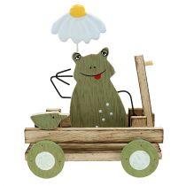 Groda i vagnens natur, grön 19cm x 7cm x 14cm 4st
