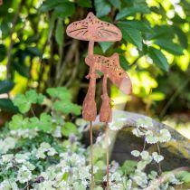 Trädgårdspropp svamppar Edelrost H49,5cm