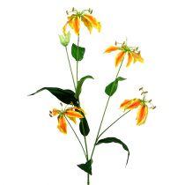Gloriosa gren orange-gul 90 cm 1p